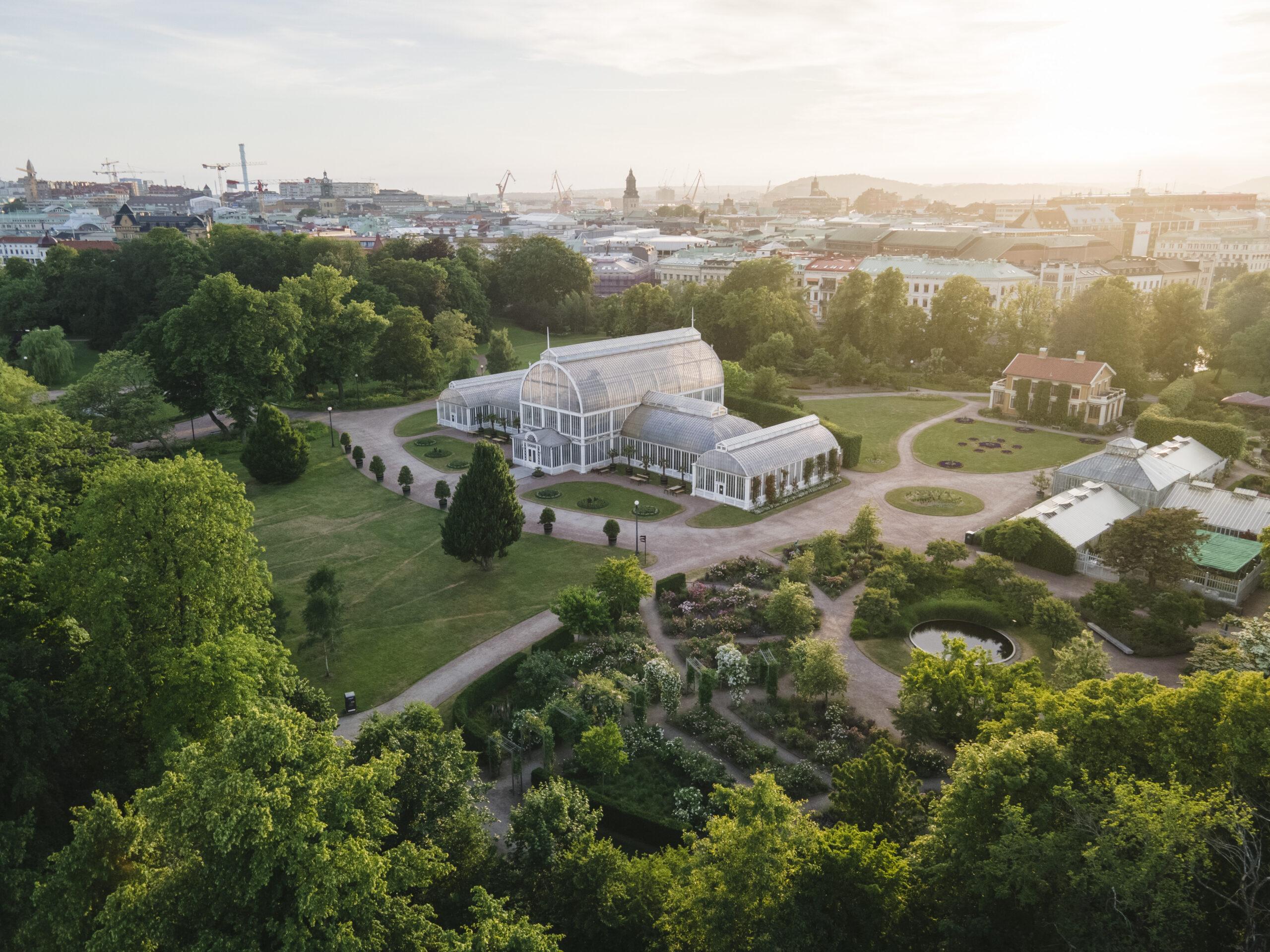 Trädgårdsföreningen i Göteborg